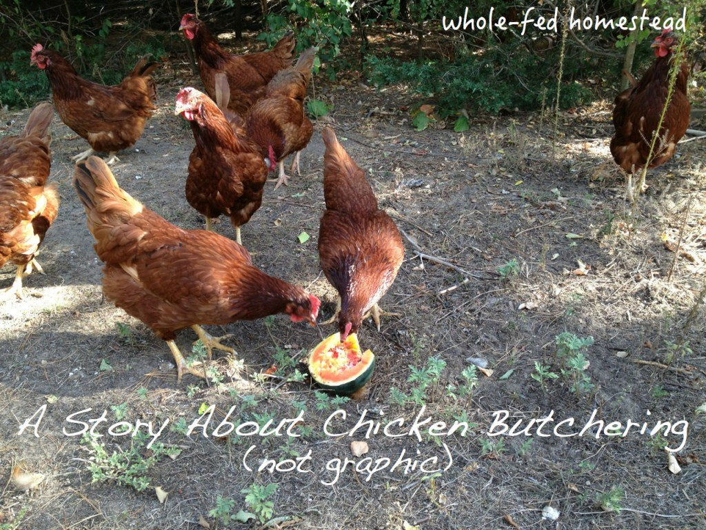 A Story About Chicken Butchering
