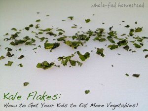 "Kale Flakes…or, How to Get Your Kids to Eat More Vegetables using ""Green Sprinkles"""