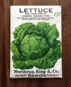 Vintage 1962 Lettuce Seed