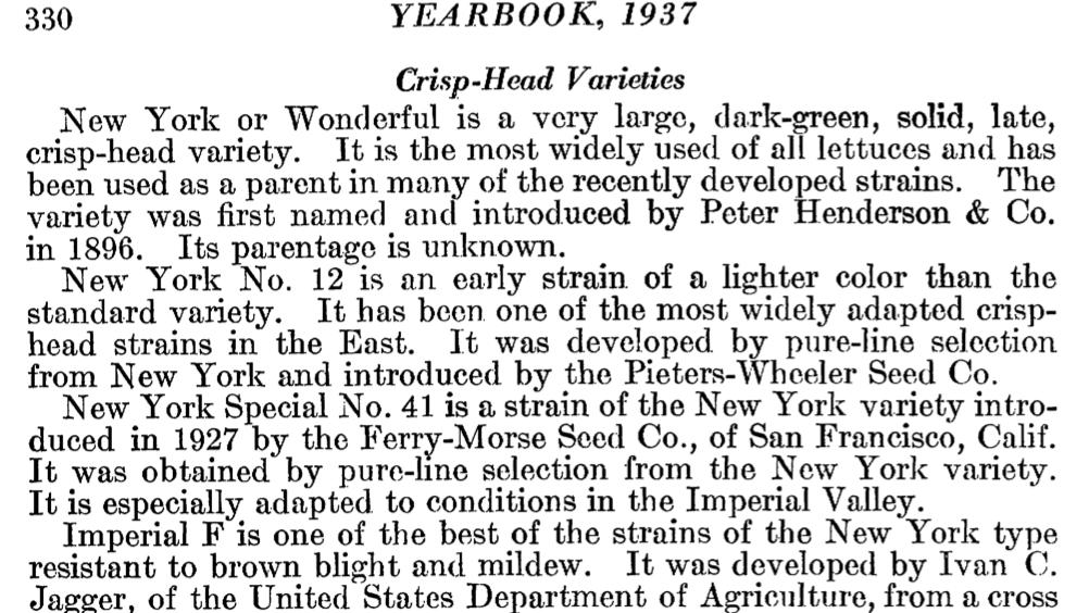 1962 Yearbook Lettuce