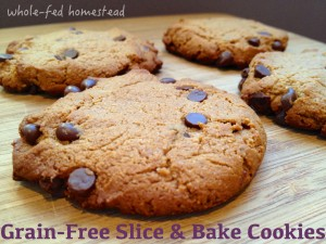 Grain-Free Slice and Bake Chocolate Chip Cookies: DIY Frozen Cookie Dough