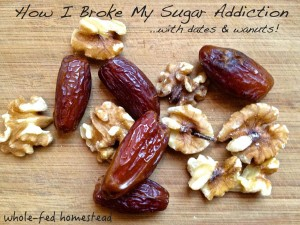 Dates & Walnuts: A Story of Salvation