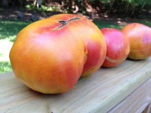Pineapple Tomato