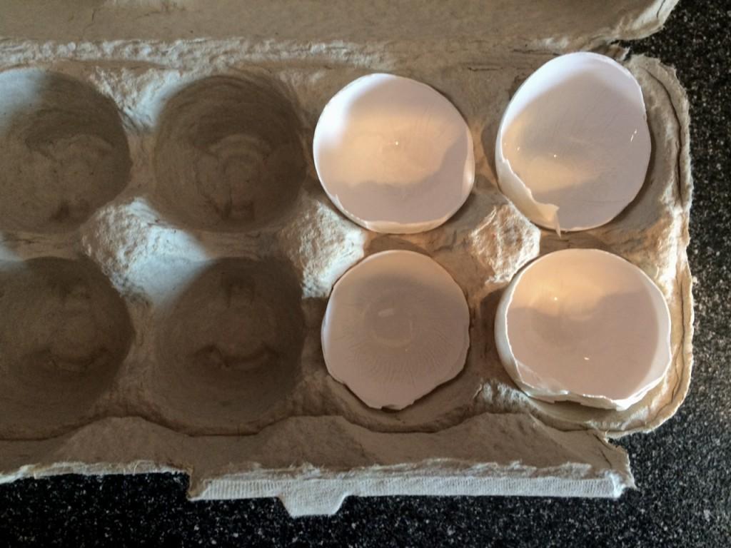 Duck Egg Shells