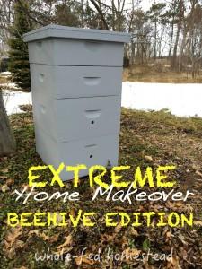 repair paint old beehive