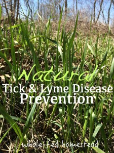 natural lyme disease prevention tick repellent