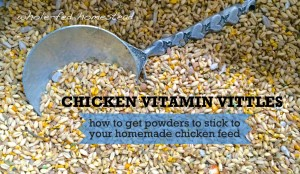 Chicken Vitamin Vittles… or, A New Technique to Get Powders to Stick to Your Homemade Chicken Feed