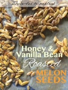 Honey & Vanilla Bean Roasted Melon Seeds