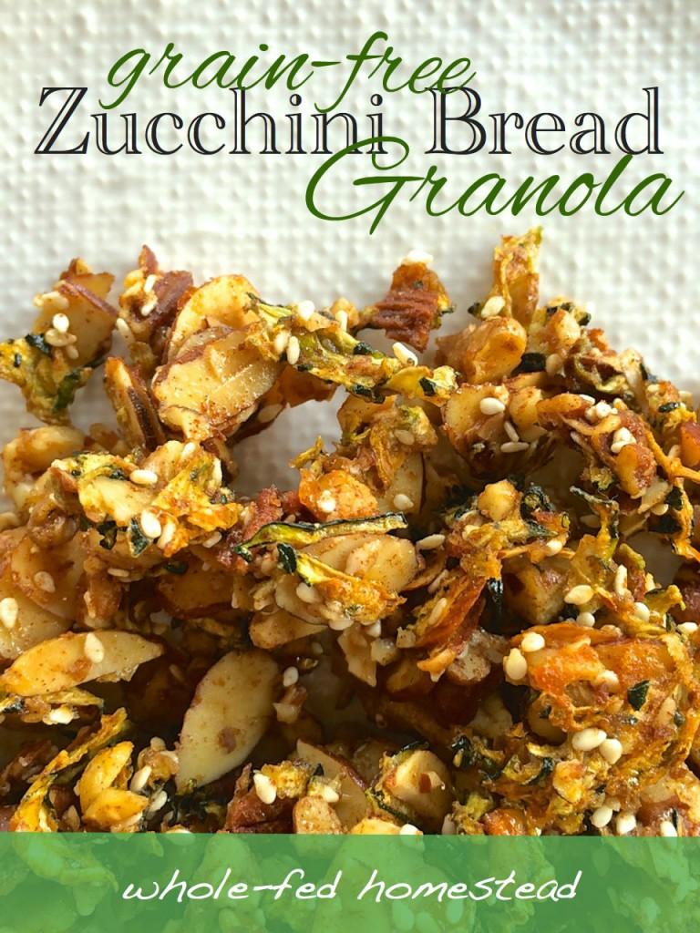 grain free gluten free zucchini abundance granola healthy