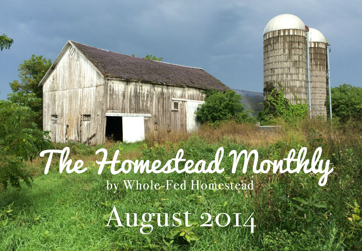 The Homestead Monthly: August 2014