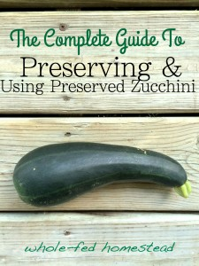 how to freeze dehydrate zucchini use frozen dehydrated zucchini