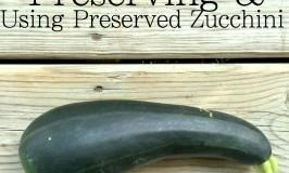 how to freeze dehydrate zucchini use frozen dehydrated zucchini