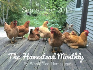 The Homestead Monthly: September 2014