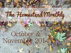 The Homestead Monthly: October & November