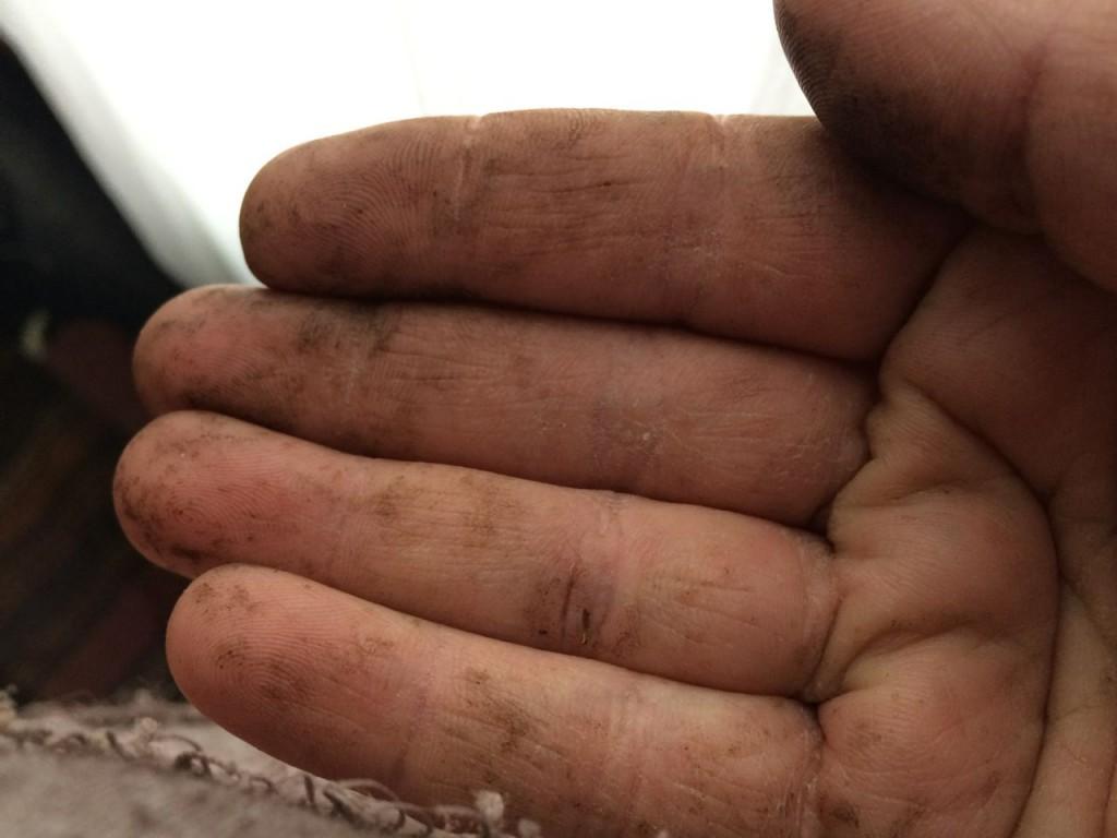 sap hands large