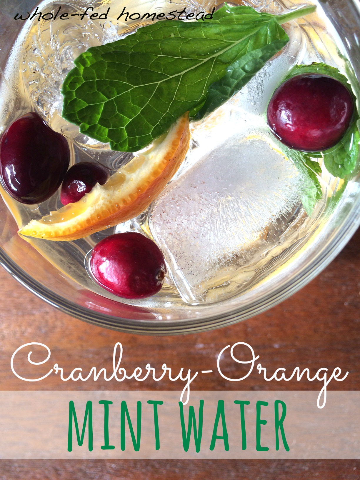 Cranberry Orange Mint Flavored Water