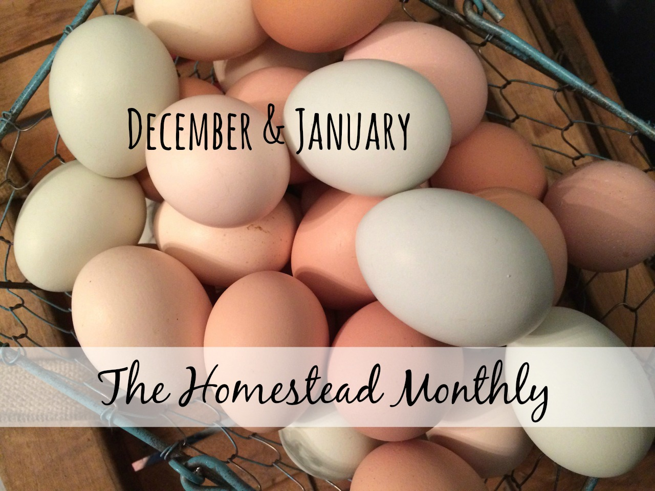 The Homestead Monthly: December & January