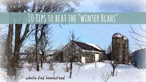 10 Tips to Beat the Winter Blahs on the Homestead