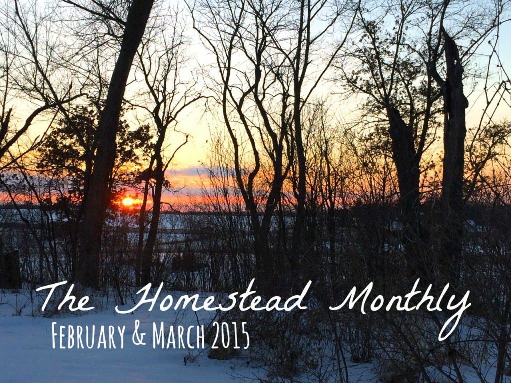 Whole-Fed Homestead: The Homestead Monthly: February & March- a farm update.