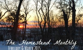 Homestead Monthly Feb March