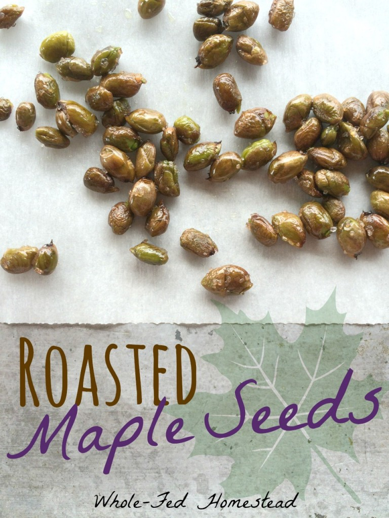 Roasted Maple Seeds Feature