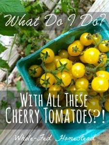 What Do I Do with All These Cherry Tomatoes?!