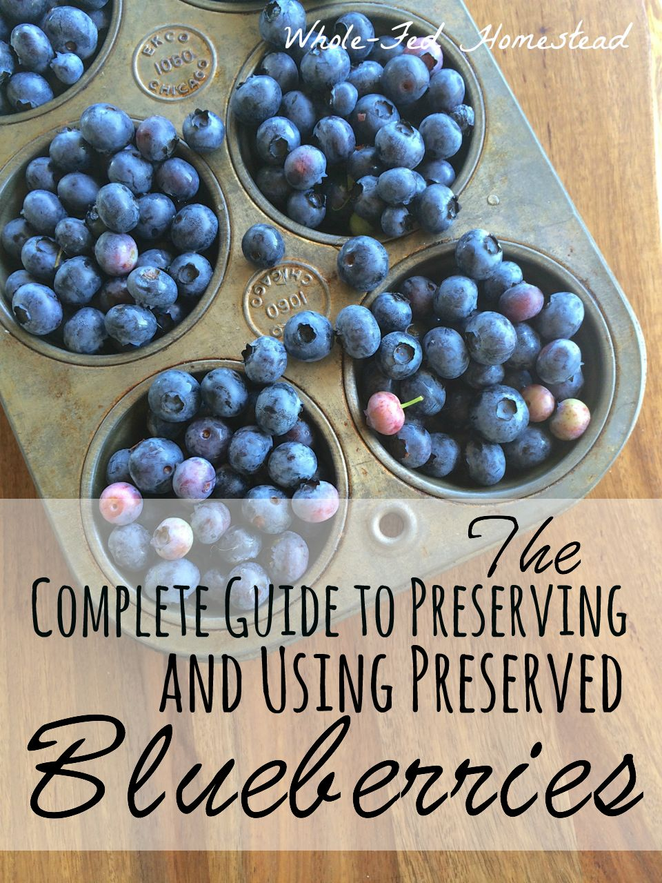 The Complete Guide to Preserving and Using Preserved Blueberries