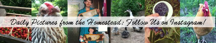 Instagram Collage Whole Fed Homestead