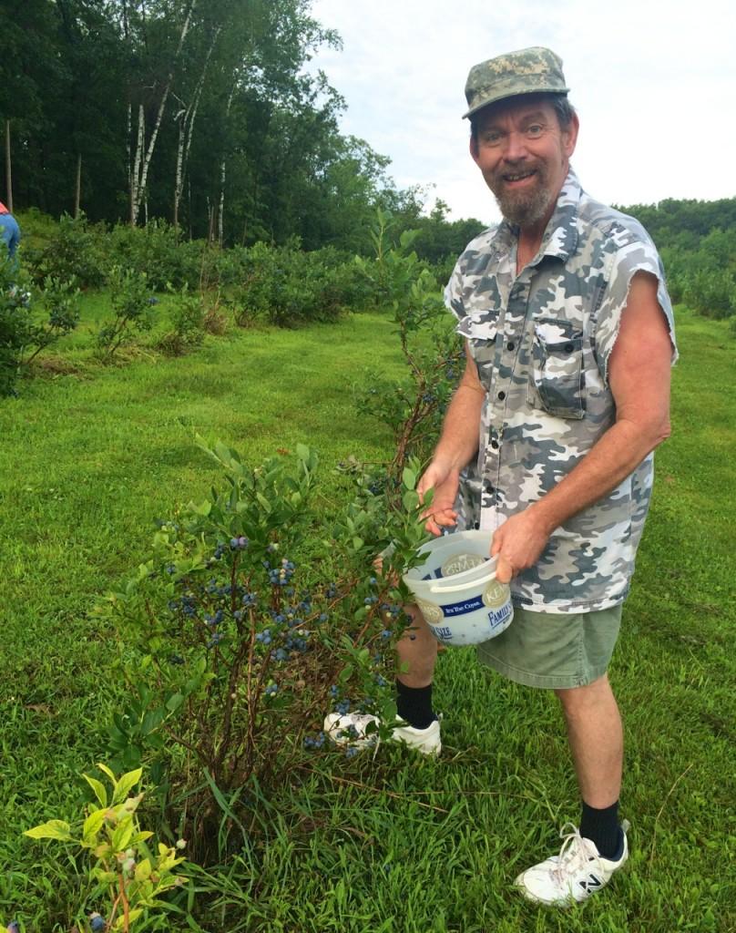 Dad picking blueberries