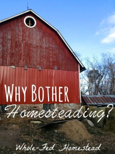 Why Bother Homesteading