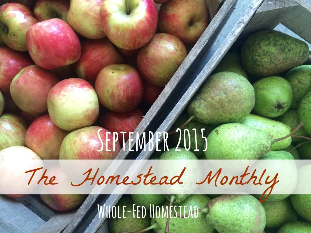 Homestead Monthly September