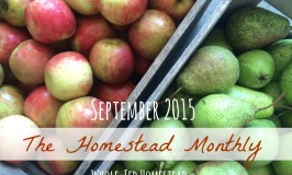 Homestead Monthly September