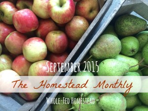 Homestead Monthly: September 2015