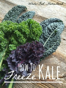 How to Freeze Kale