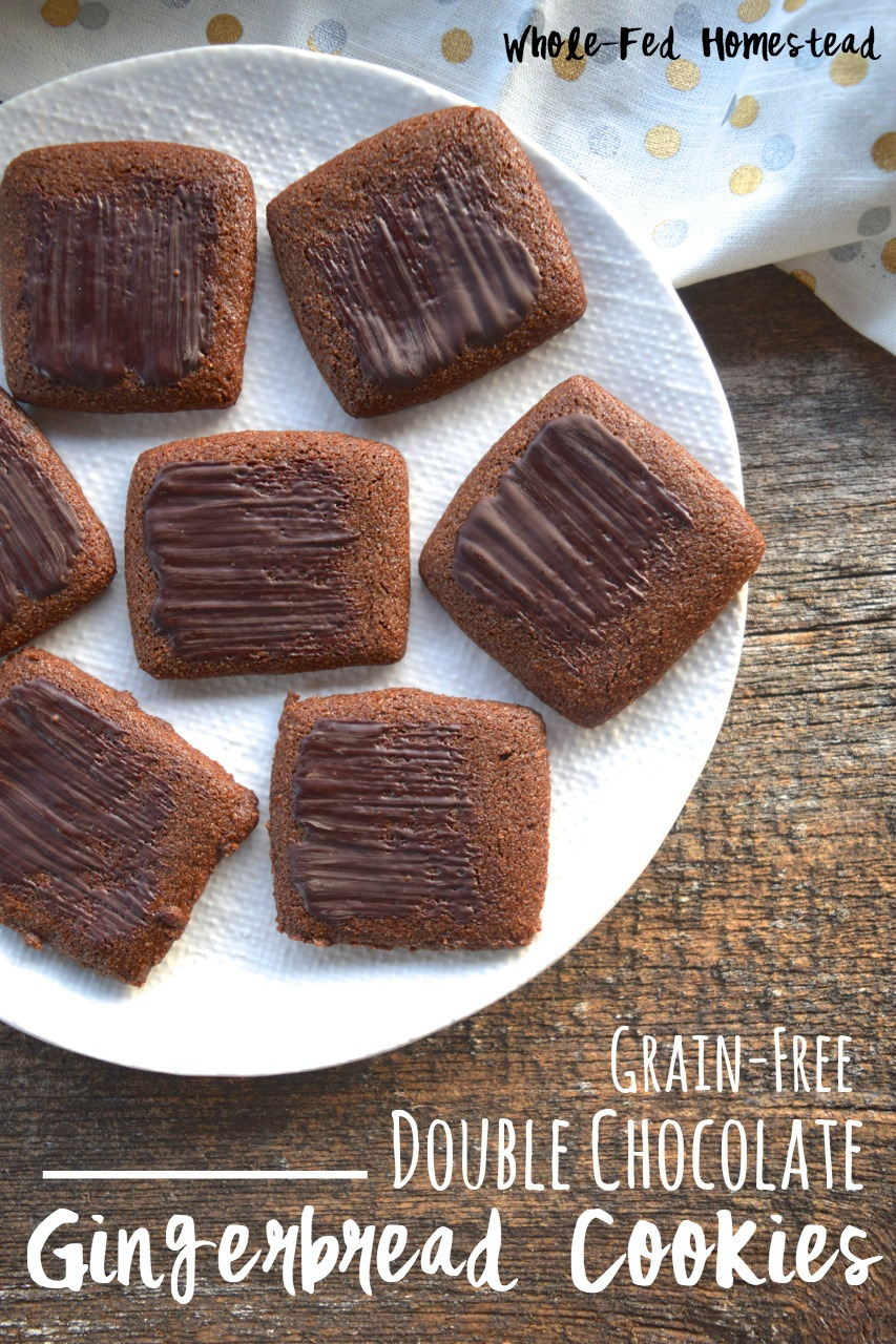 Grain-Free Double Chocolate Gingerbread Cookies