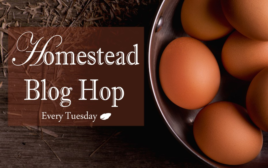 Homestead Blog Hop - Every Tuesday! | Real food recipes, live stock, crafts, DIY, how-to's, gardening, homeschooling, natural home and health, self-sufficiency, self-reliance, natural remedies, essential oils, and more! | Whole-Fed Homestead