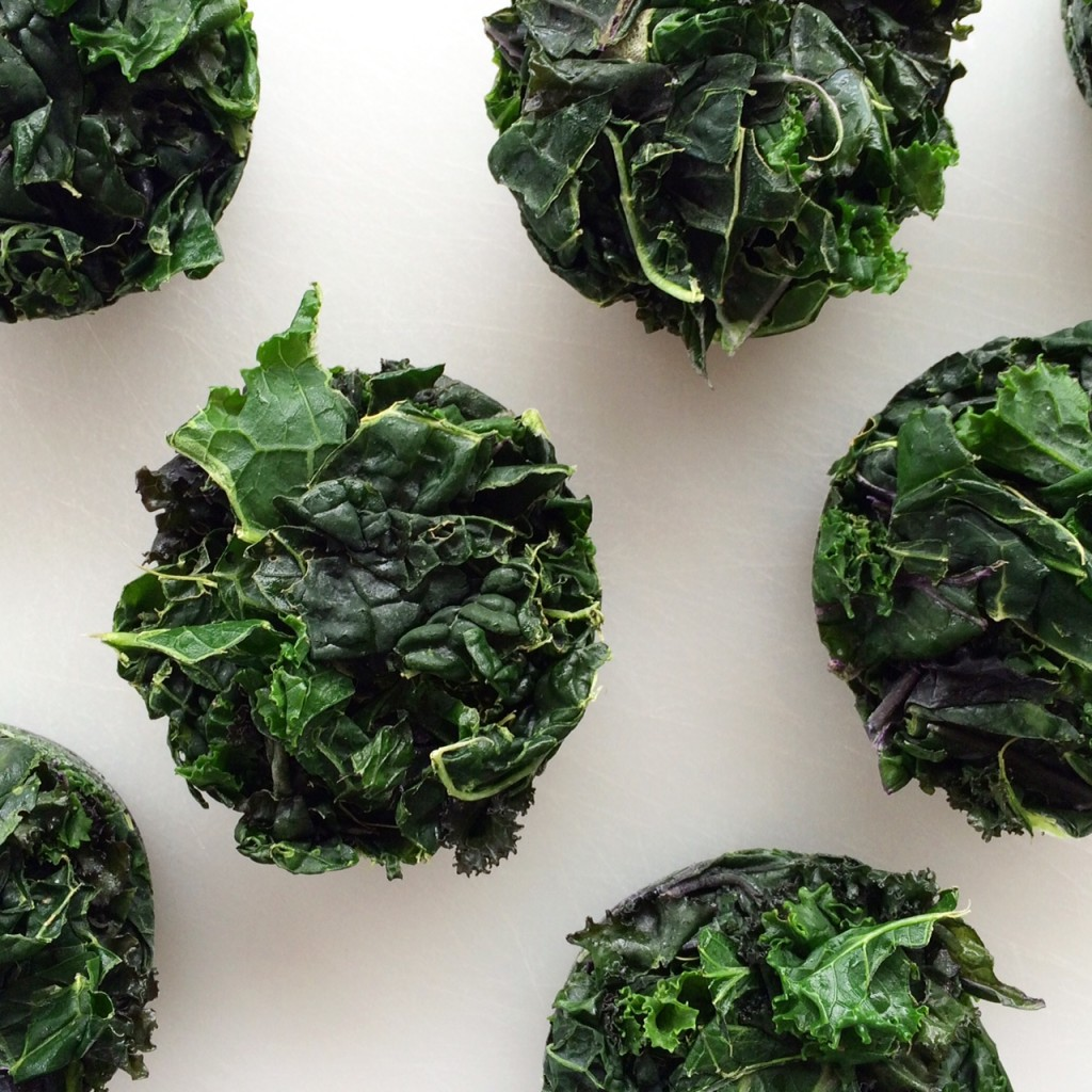 kale pucks, Whole-Fed Homestead Monthly Update November 2015 | Gardening - Chickens - Ducks - Foraging - Real Food