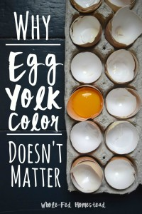 Why Egg Yolk Color Doesn't Matter