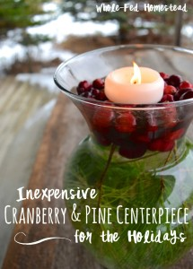 Cranberry & Pine Centerpiece for the Holidays: Easy and Inexpensive!