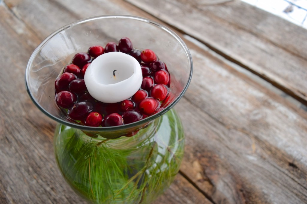Cranberry & Pine Centerpiece for the Holidays: Easy and Inexpensive! | Whole-Fed Homestead