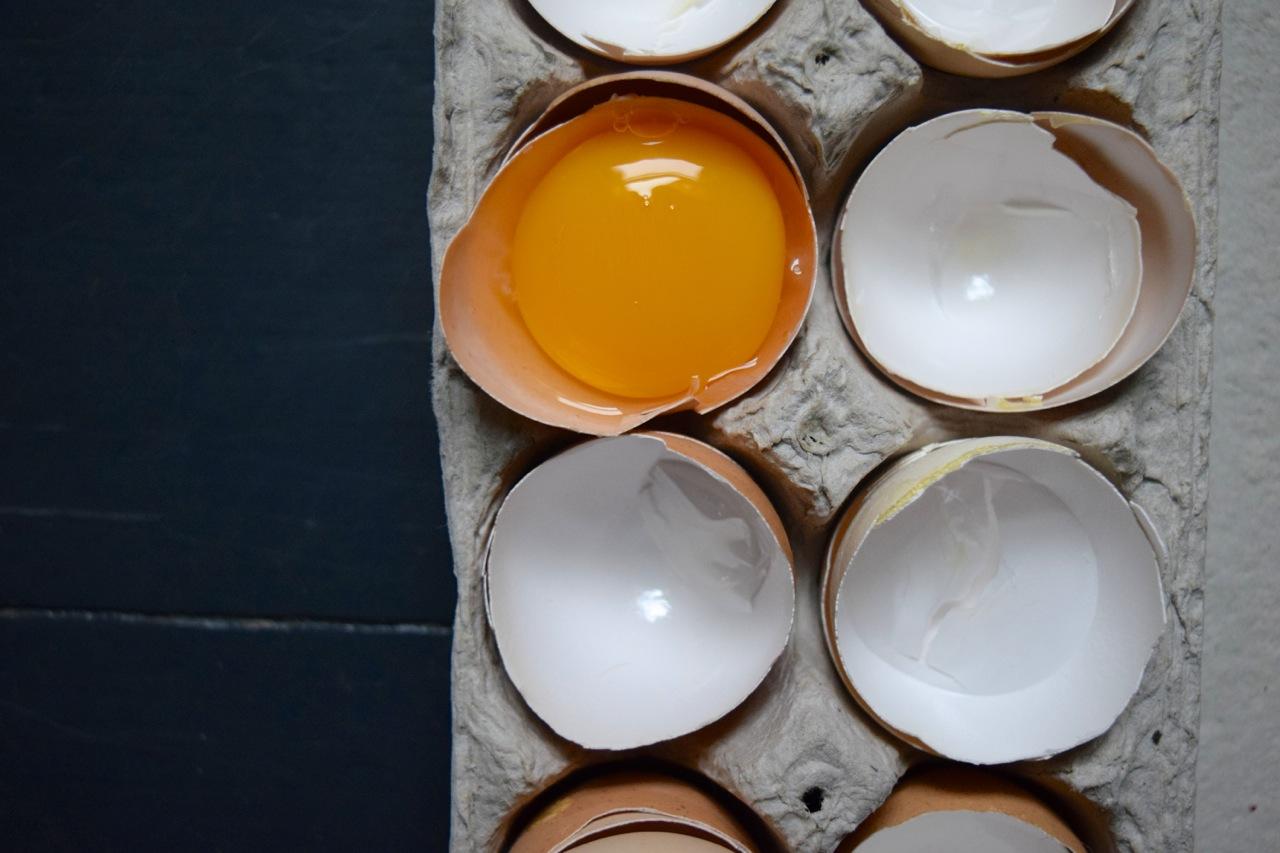 egg yolk horizontal
