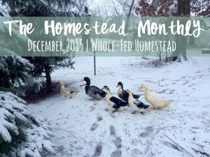 Homestead Monthly: December 2015 {Farmhouse kitchen makeover and snow-bound chickens!}