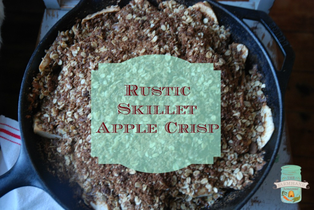 apple-Crisp-1024x686