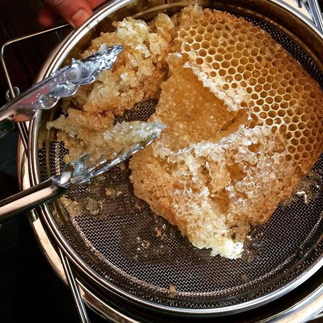 honey straining, How to Find the Highest Quality Raw Honey - Advice from a Beekeeper | Whole-Fed Homestead