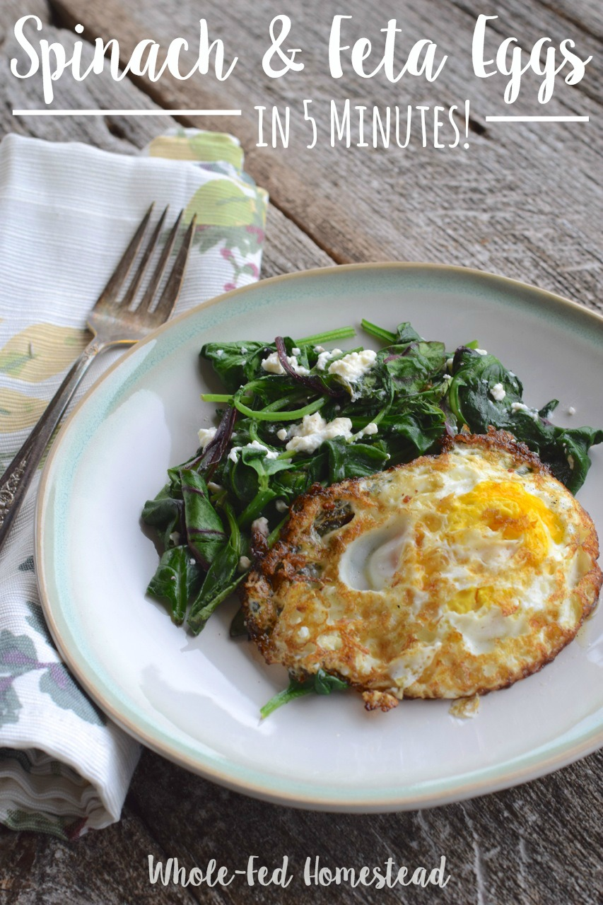 5 Minute Spinach and Feta Eggs | Paleo, healthy, gluten-free, nutrient-dense, quick and easy breakfast! | Whole-Fed Homestead