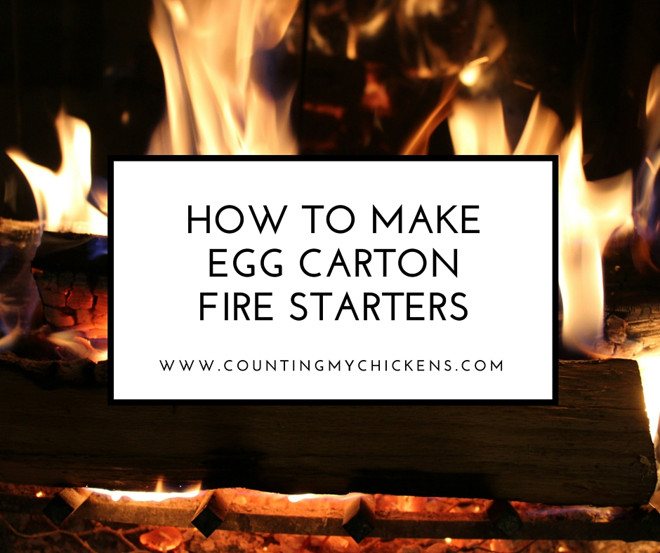 homemade egg carton fire starter, Welcome friends and fellow homesteaders! Link up your posts on sustainable living, wholesome recipes, and anything homestead-related on the Homestead Hop!