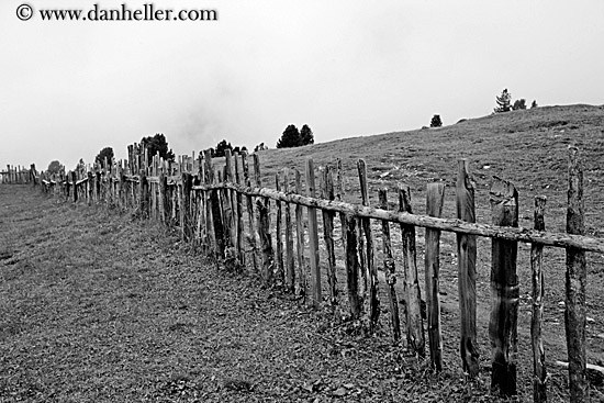 old-wood-fence-bw-big.jpg