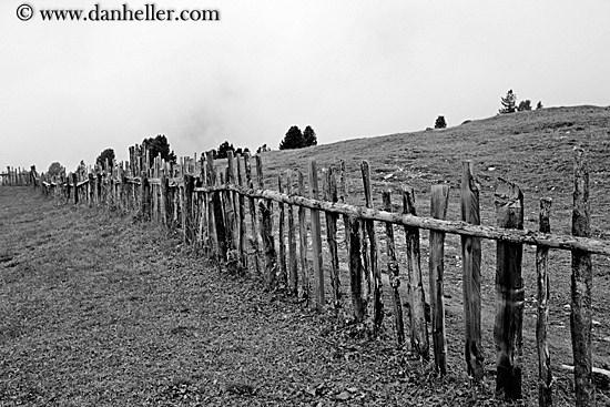 old-wood-fence-bw-big.jpg