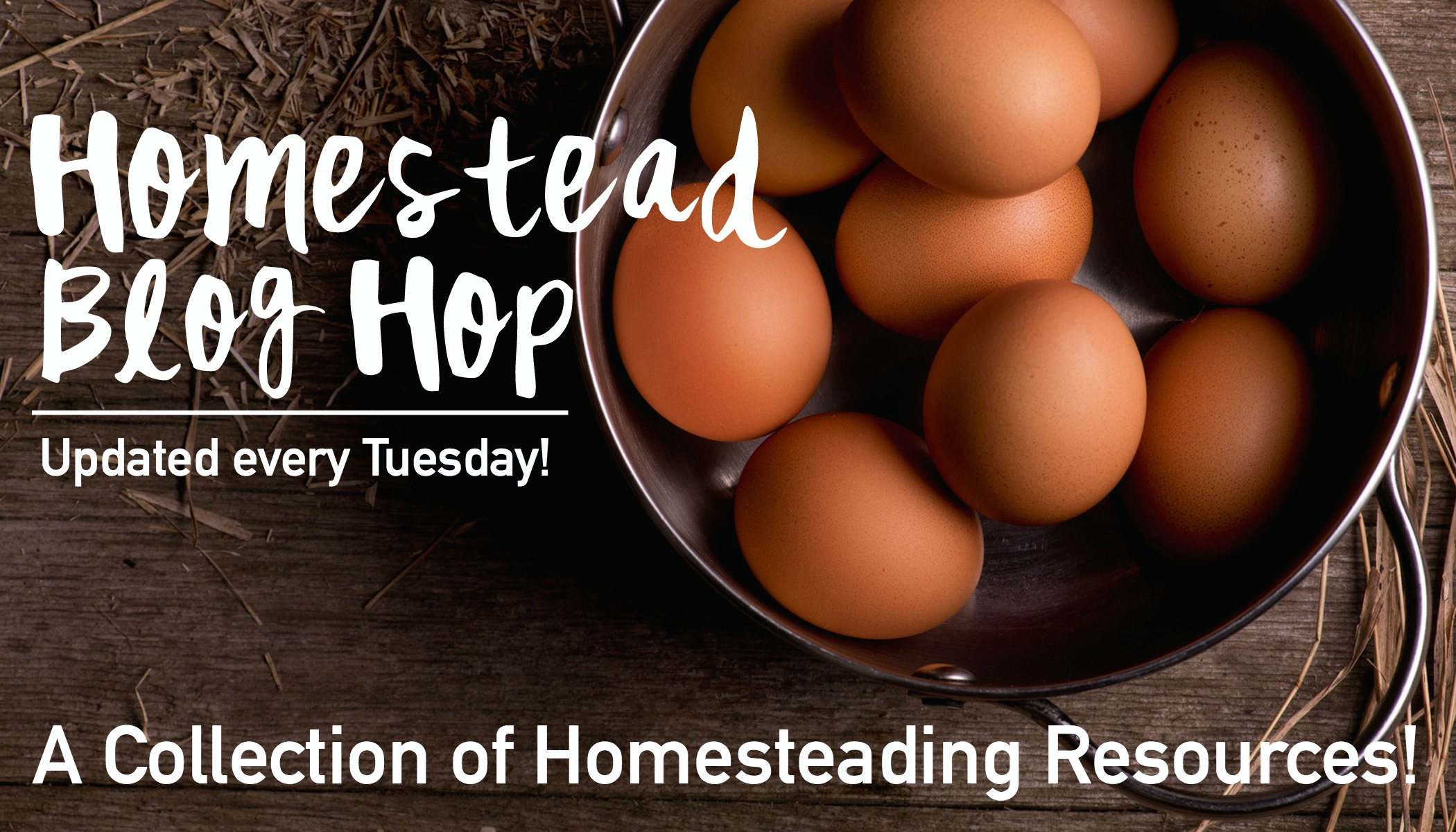 {June Collection} Weekly Homestead Blog Hop