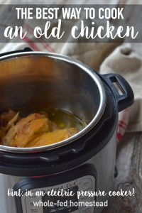 The Best Way to Cook an Old Chicken (Hint: in an electric pressure cooker!)